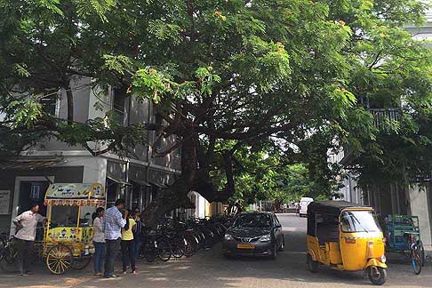 Traffico e atmosfere indiane - Atmosfera Pondicherry in India con tre ruote usati come taxi, bike e auto Toyota